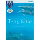 HD-DVD 「True Blue」